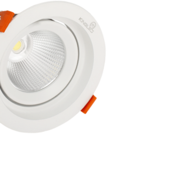 Đèn LED spot light DLR-10-T115 Kingled